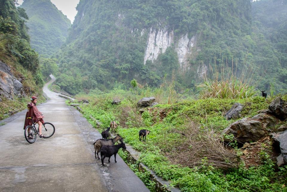 20130401 Halong Bay Vietnam_D600_ND6_6444